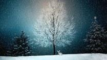 winter-2896970__180